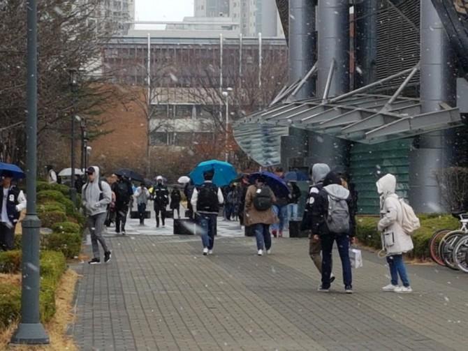 21일 경기 수원에 위치한 성균관대 자연과학캠퍼스의 학생들이 눈이 오는 거리를 걸어가고 있다.-김진호 기자 제공