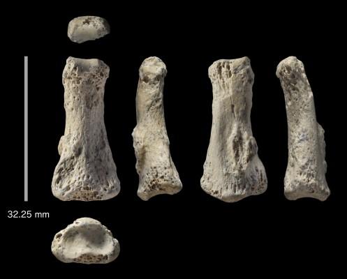현생인류의 아라비아 반도 진출 시기 최소 8만5000년 전