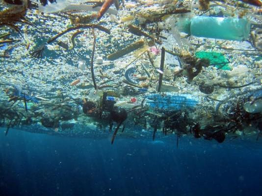 '쓰레기 대란'에 플라스틱 그냥 버렸다간…미세플라스틱으로 식탁까지 위협