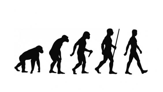 360만 년 전 조상들도 현생인류처럼 '직립보행'했다?