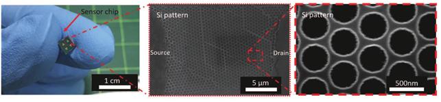 KAIST 연구진이 개발한 수소센서(왼쪽), 수소센서를 전자현미경으로 촬영한 사진(가운데, 오른쪽). KAIST 제공.