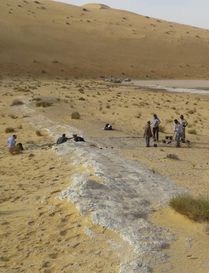 알 우스타에서 화석을 발굴하는 모습. - 사진 제공 이언 카트라이트