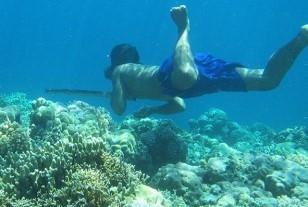 열대 바다를 잠수 하고 있는 남아시아 바자우 족의 일원 - cell