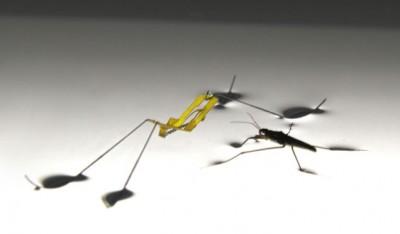 소금쟁이를 모방해 만든 로봇. - 어린이과학동아 7호 제공