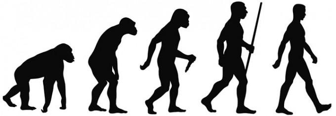인류의 진화 과정을 나타낸 그림. 인류가 두 발로 걷기 시작한 것은 이보다 앞선 70만 년 전으로 추정되고 있지만, 직립보행을 시작한 건 호모 사피엔스가 출현한 20만~30만 년 전 이후부터로 알려져 있었다. 이런 가운데 최근 630만 년 전 인류 조상도 직립보행을 했다는 새로운 연구 결과가 나왔다. - 사진 출처 위키미디어