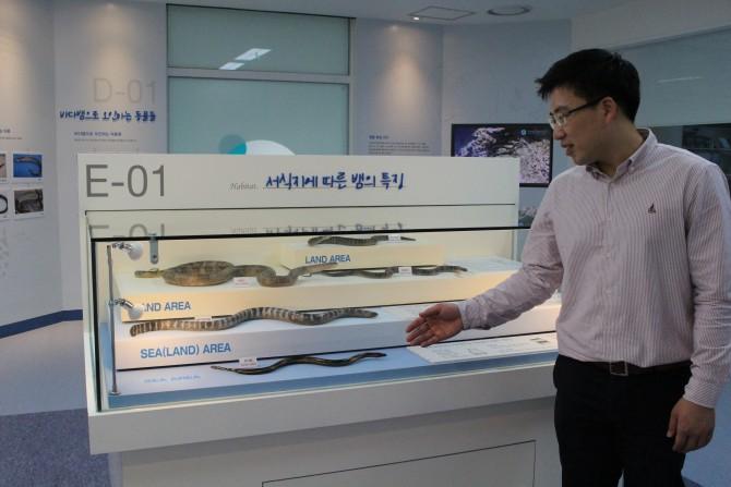 국립해양생물자원관에 마련된 바다뱀 연구소에서 바다뱀에 대해 설명 중인 김일훈 박사. -이혜림 기자