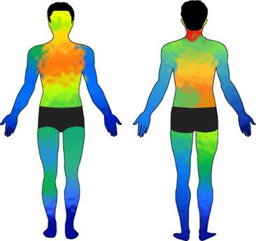 피부 센서와 대면적 안테나 이용해 만든 생체 지도. 인체 전면의 체온을 한눈에 볼 수 있다. -아주대 제공