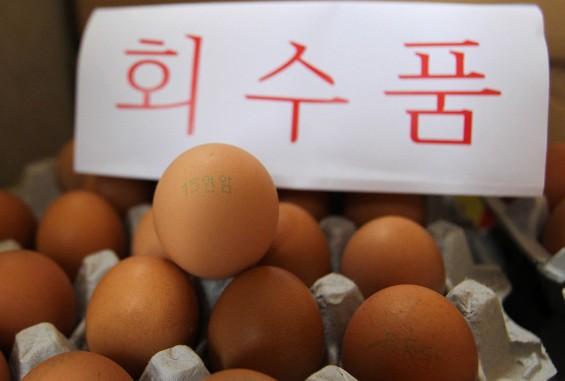 살충제 계란 파동 재발될라…내일부터 수거 후 검사