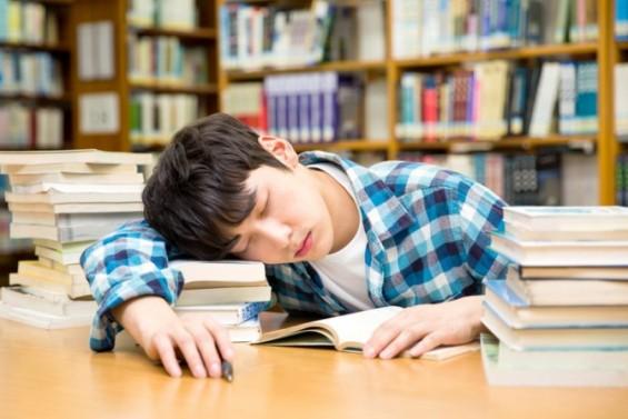 창의력 비결은 잠...수면 중 기억-창의력 관계 모델 제시