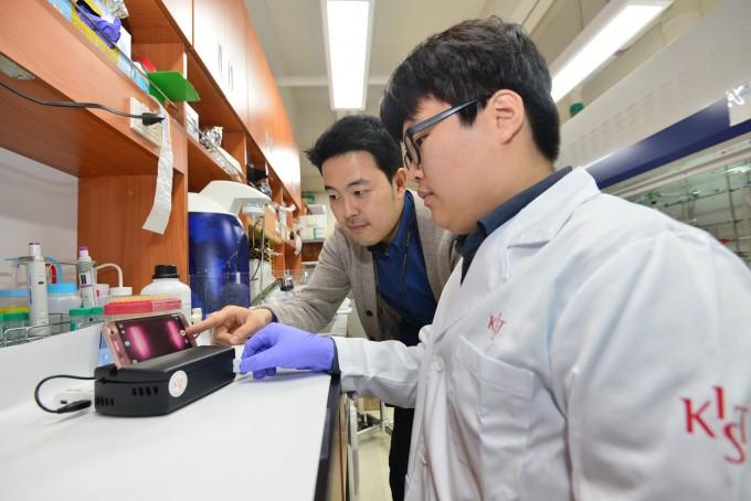 최근 과학계의 트렌드는 융합연구다. 사진은 한국과학기술연구원(KIST) 분자인식연구센터의 모습. - 한국과학기술연구원 제공.
