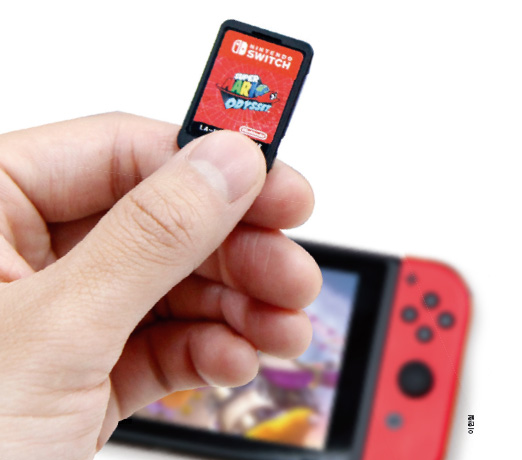 닌텐도 스위치 게임팩 - 이한철 제공