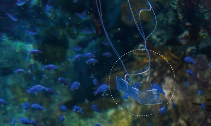 미국 UC샌디에이고 스크립스 해양연구소의 버치 수족관 탱크에서 '뱀장어 로봇'(점선 원)을 테스트하는 모습. - University of California San Diego 제공