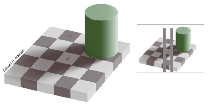 체스판의 A 부분이 B보다 더 어둡게 보이지만, 실제로는 같은 색깔이다. 우리 뇌는 주변과 비교하여 상대적으로 색깔을 느끼기 때문에, 더 밝은색으로 둘러싸인 A가 더 어둡게 보인다. 왼쪽 그림을 통해 A와 B가 같은 색임을 확인할 수 있다. - 어린이과학동아 2018년 10호(=Edward H. Adelson) 제공