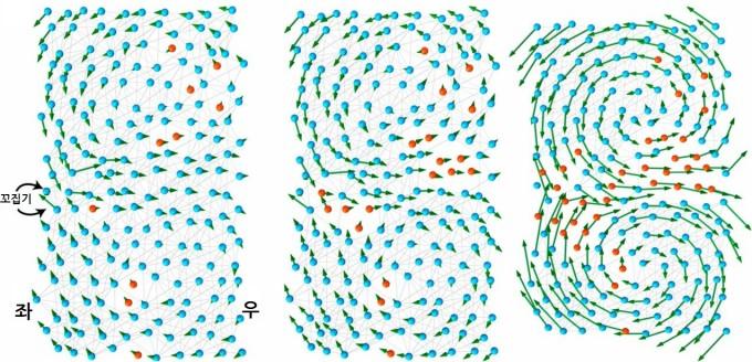 단백질 구조의 진화와 힘 전달에 따른 경첩운동을 나타낸 모습. IBS 제공.