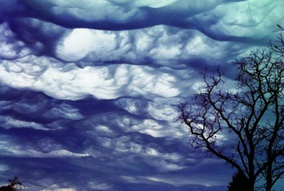[아마추어?과학자!]구름이 정말 좋아서....파도 같은 구름 발견하다