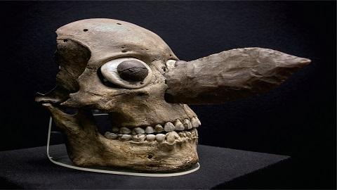[표지로 읽는 과학] 아즈텍 문명의 신비, '해골의 벽'의 정체는?