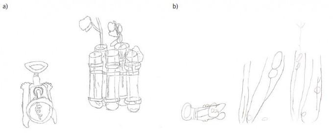 코르크마개뽑이와 꽃이 담긴 꽃병을 그린 그림으로 왼쪽은 사실적 묘사에 재능을 타고난 자폐 성향인 열 살 아이의 그림이고 오른쪽은 그런 재능이 없는 같은 나이 아이의 그림이다. 왼쪽 코르크마개뽑이 그림을 보면 3차원 구조에 대한 이해가 명쾌함을 알 수 있다. - '자폐 및 발달장애 저널' 제공