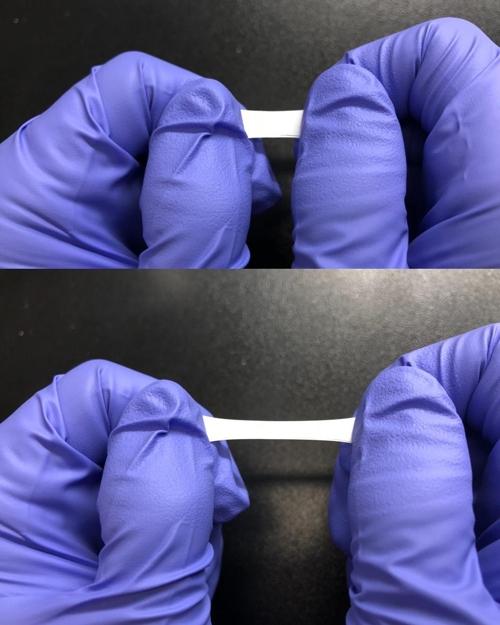 고무줄처럼 늘어나는 배터리용 분리막이 2배이상 늘어난 모습니다.- 울산과학기술원 제공