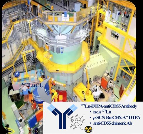 동위원소 약물전달체 제조시 사용되는 연구용 원자로 HANARO 및 방사성동위원소 생산시설로, 연구팀이 개발한 표적치료제는 여기서 만든 방사성동위원소인 루테튬-177를 항체에 붙이는 방식이다.-한국원자력의학원 제공