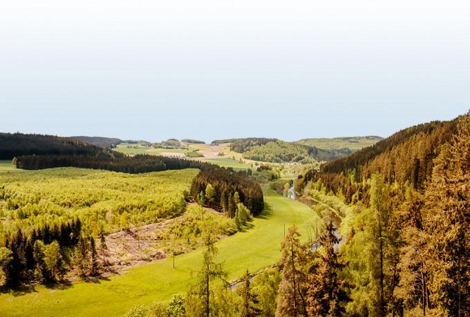 독일의 DMZ였던 지역은 생태공원인 '그뤼네스 반트'로 다시 태어났다. 사진에서 나무 없이 탁 트인 지역이 그뤼네스 반트 지역이다. - juergen-skaa(F) 제공