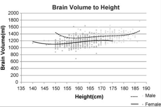 뇌용량과 키의 관계를 보여주는 그래프. 키가 클수록 뇌용량도 커지지만 증가폭은 미미하다. 반면 모든 키의 범위에서 키가 같을 경우 여성의 평균 뇌용량이 남성보다 작다. 18~22세 이란 여성 452명, 남성 320명의 측정 결과다. 여성 평균은 1163cc로 남성 평균 1343cc보다 14% 작아 다른 데이터보다 차이가 다소 나는 편이다. 뇌용량이 1000cc(ml)에 못 미치는 여성이 몇 명 보인다. 남녀 모두 좌우 말단의 그래프 곡선은 사람 수가 적어 통계적으로 의미가 없다. - '임상 신경학 및 신경외과' 제공