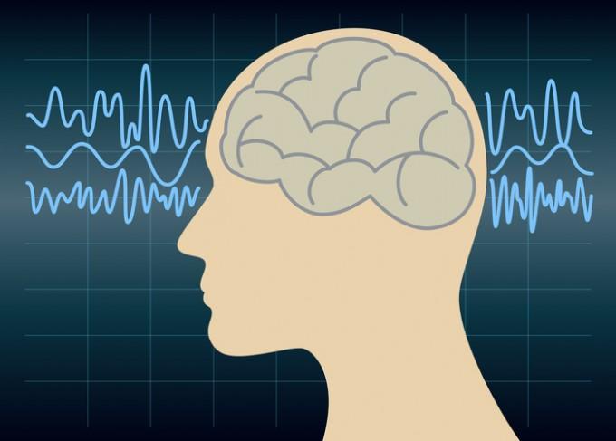 뇌가 아주 큰 사람은 에너지 소모량도 늘어나기 마련이다 -사진 GIB 제공