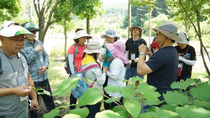 여름 캠프에 참가한 지구사랑탐사대 대원들이 식물 탐사에서 만난 생강나무의 나뭇잎에 코를 대 보며, 매콤한 생강 냄새가 나는지 확인해 보고 있다.