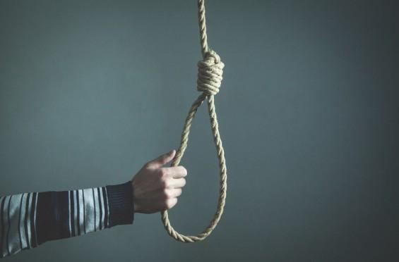 [내 마음은 왜 이럴까?] 자살의 진화