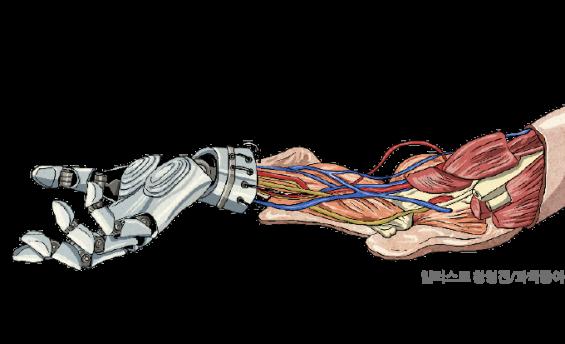 200년만에 환생한 프랑켄슈타인...팔 이식, 전자의수 무엇을 원해요?