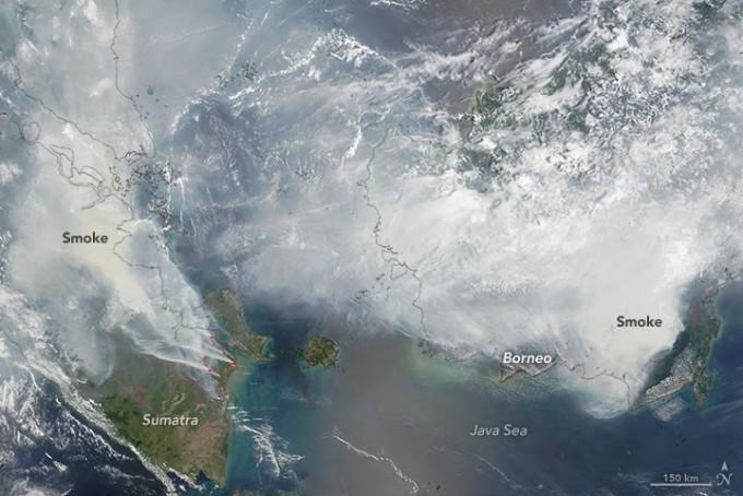 2015년 인도네시아 지역 위성 영상. 흰 부분은 구름이 아니라 연기다. 엘니뇨에 의해 가뭄이 든 동남아 지역에서 산불이 났다. - 사진 제공 NASA
