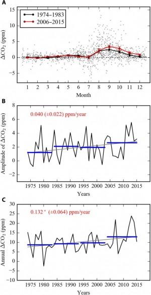 위부터 월별 대기중 이산화탄소 농도 변화량 비교(빨간색이2006년 이후), 이산화탄소 농도의 변동폭(해가 갈수록 월별 변동폭이 커짐), 그리고 연간 농도 변화(해가 갈수록 많아짐). -사진 제공 사이언스 어드밴시스