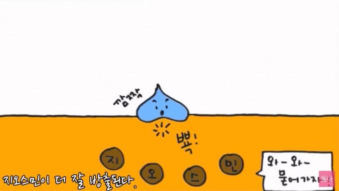 물방울이 토양에 떨어질 때 생기는 에어로졸에 의해 지오스민이 더 잘 방출된다.-  과학 읽어주는 언니 제공