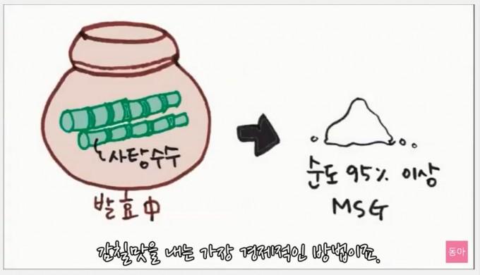 사탕 수수를 발효시켜 MSG 성분을 순도 95% 이상으로 만든 게 미X이다. - 과학 읽어주는 언니 제공