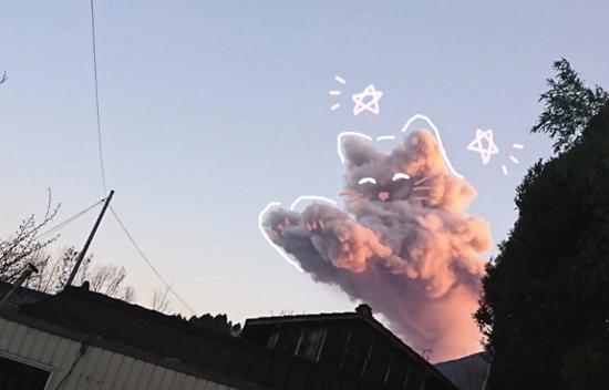 '고양이 구름 ' 신기해
