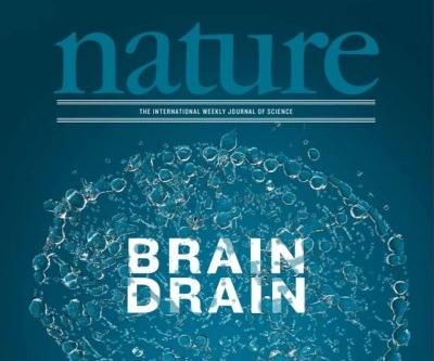 [표지로 읽는 과학] 뇌에도 찌꺼기 배출하는 림프관 있다…알츠하이머병 치료 단초 될까