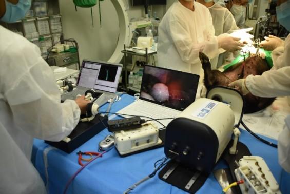 흉터없이 치료 가능한 '내시경 수술로봇' 나왔다