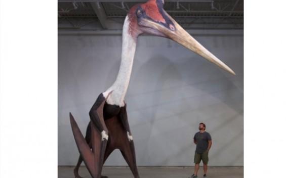 실존했던 거대한 괴물 날짐승