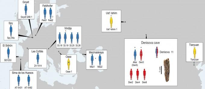약 4만 년 전 유라시아 지역에서 발견된 인류들. 파란색은 네안데르탈인, 빨간색은 데니소바인, 노란색은 현생인류다. 이번에 이종교배가 확인된 개체는 빨강과 파랑이 반씩 섞여 있다. 유전자에 일부 다른 종의 유전자가 포함된 경우는 점이 찍혀 있다. - 사진 제공 네이처
