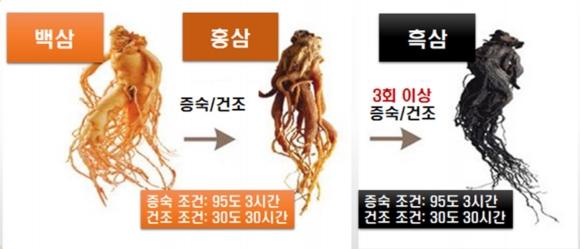 흑삼의 제조과정. 한국식품연구원 제공.