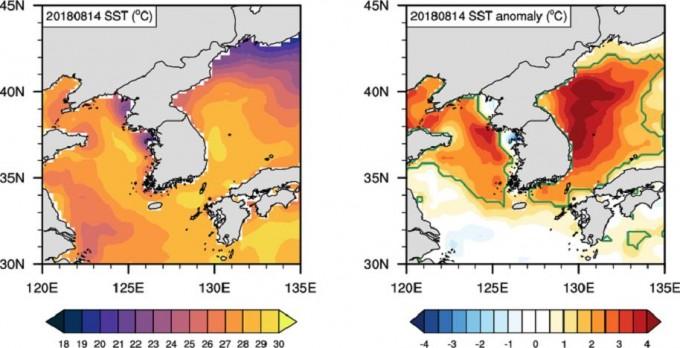 2018년 8월 14일의 해수면 온도 분포 영상(왼쪽)과 30년 평균값으로 본 해당일 온도 변화(오른쪽). 한반도 주변 바다가 상대적으로 더 뜨거워지고 있음을 알 수 있다. - 해양과학기술원 제공.