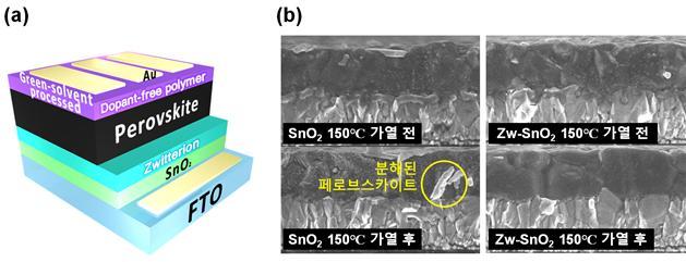 포스텍 연구진이 새롭게 개발한 페로브스카이트 태양전지의 소자구조(왼쪽)와 150℃ 가열 전, 후의 페로브스카이트 전자주사현미경 사진(오른쪽).기존 전자 전달층 위의 페로브스카이트는 개질된 전자 전달층 위에서보다 고온(150℃)에서 더 빨리 분해된다. 포스텍 제공.