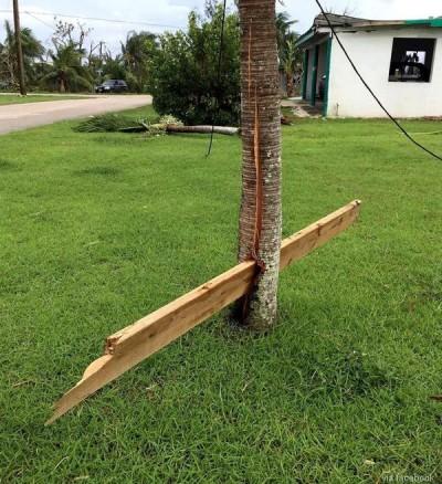 토네이도의 위력을 보여주는 사진
