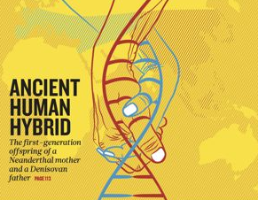 [표지로 읽는 과학]네안데르탈인과 데니소바인 12만년 전 피를 섞다