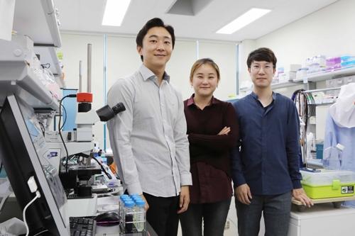 왼쪽부터 KAIST 전기 및 전자공학부 서지원 연구원, 이현주 교수, 김효중 연구원이다.-한국과학기술원 제공