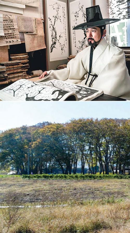 영화 '명당'의 한 장면과 행정리 마을숲의 모습이다. 조선시대 풍수는 '환경을 사람이 살기 좋게 조성한다'는 측면에서 현대의 환경 공학에 비유할 수 있을 정도로 과학적이라는 게 전문가의 설명이다. - 최원석 교수·쇼박스·메가박스중앙㈜플러스엠