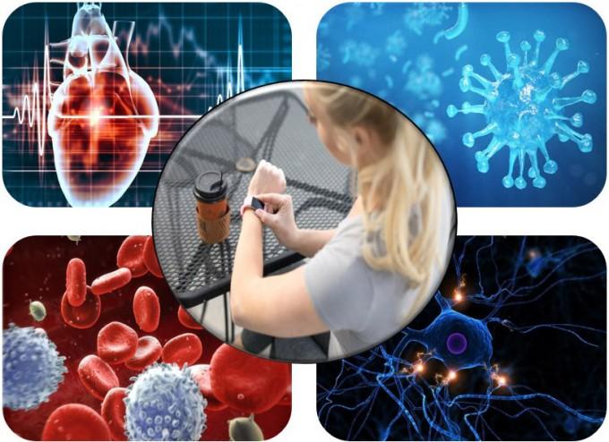 GIST연구진, 고온살균 가능한 인체 이식소재 개발