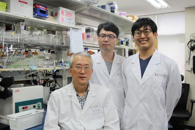자폐증 발병 원인을 분석한 IBS연구진. 김은준 단장,(아래) 정화진 연구위원(왼쪽), 박하람 연구위원(오른쪽)의 모습이 보인다. 기초과학연구원 제공.
