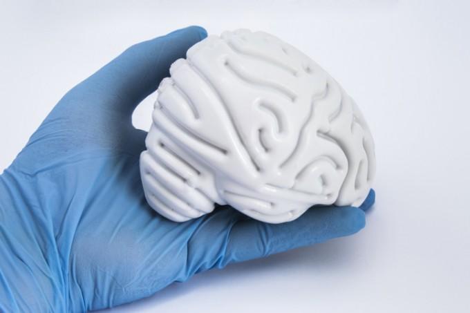 뇌 속 도파민 농도, 실시간으로 측정