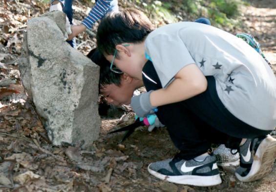 지구사랑탐사대 어벤져스 '앤트맨'과 함께 숲속 개미 찾기