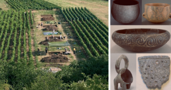 7000여 년 된 세계 최초 치즈 발견